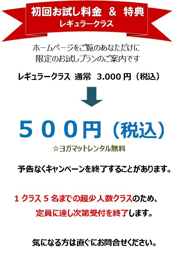 160704 初回お試しレギュラー500円
